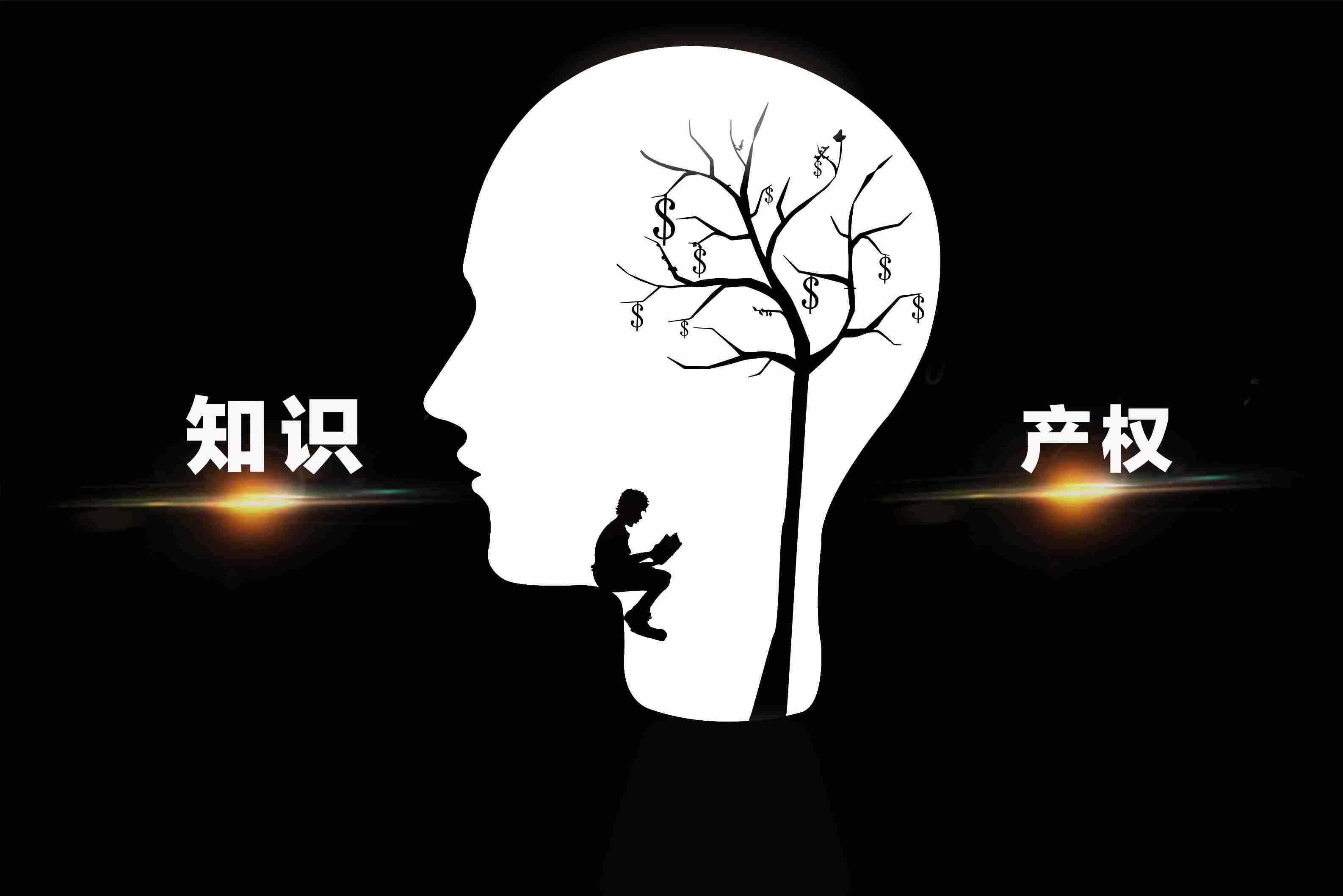 李克强总理对中国加强知识产权保护发言